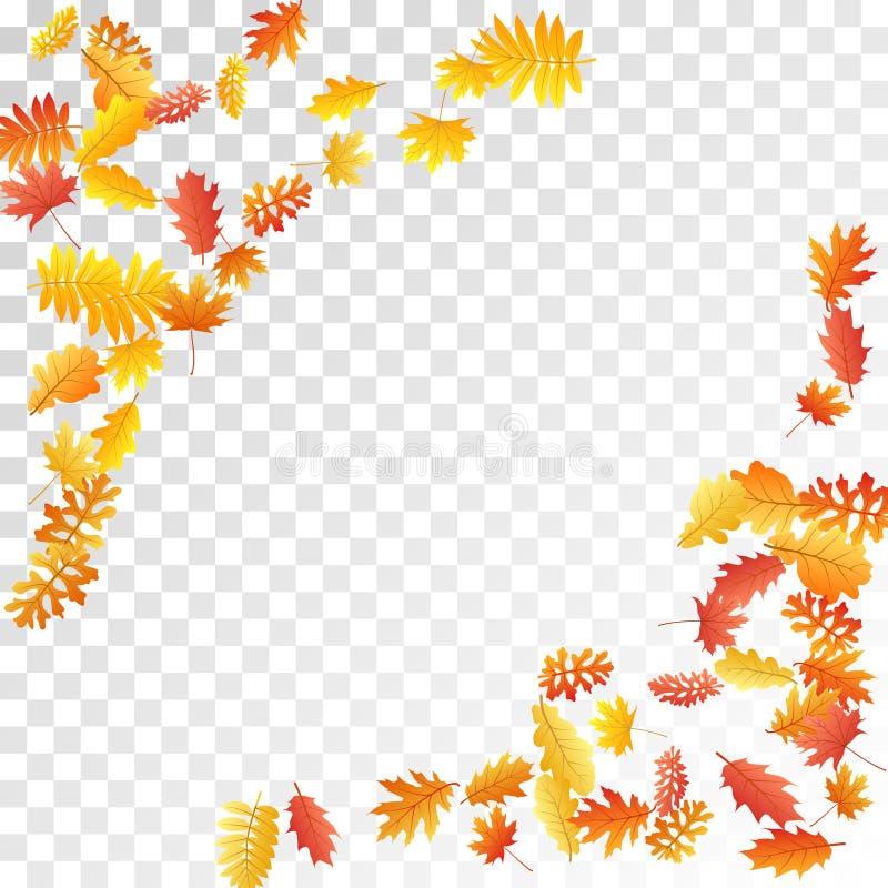 Oak, maple, wild ash rowan leaves vector, autumn foliage on transparent background. stock illustration