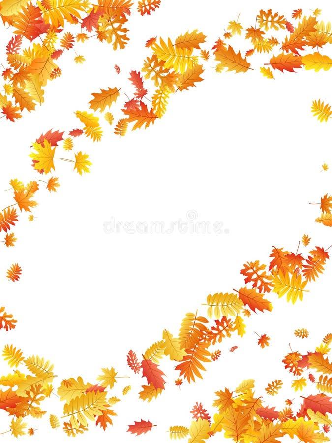 Oak, maple, wild ash rowan leaves vector, autumn foliage on white background. royalty free illustration