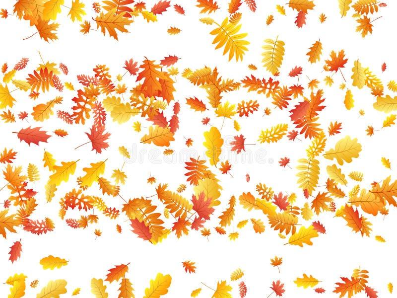 Oak, maple, wild ash rowan leaves vector, autumn foliage on white background. vector illustration