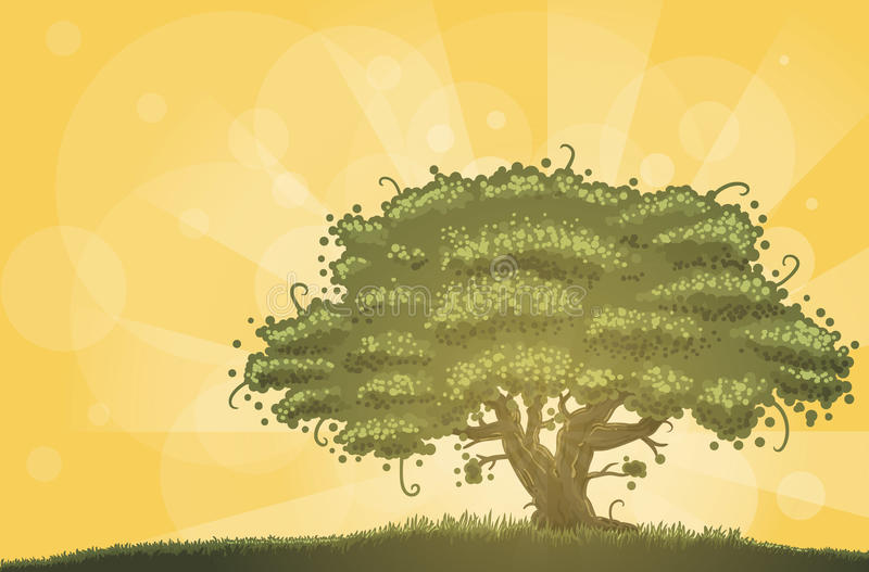 Oak in morning light. Big oak in the morning light stock illustration
