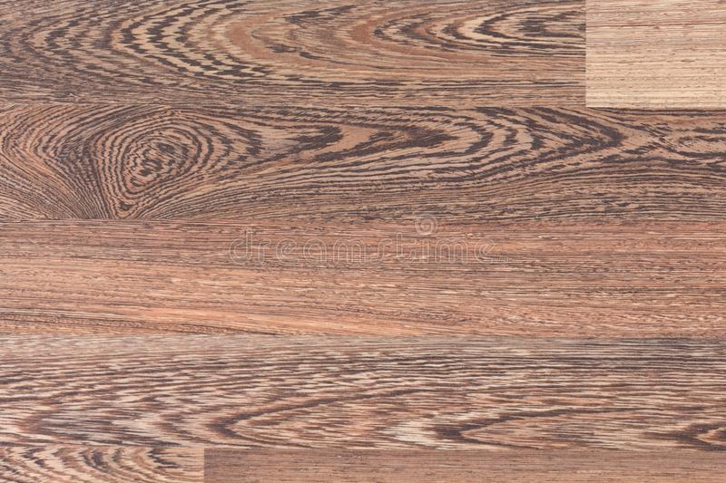 Oak parquet background. High quality texture in extremely high resolution. royalty free stock images