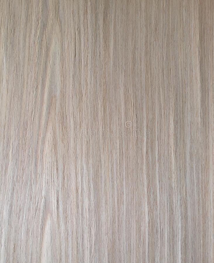 Oak rovere wood, Veneer Pattern brown wooden material finish surface furniture burr texture wall background. Surrounding stock photography
