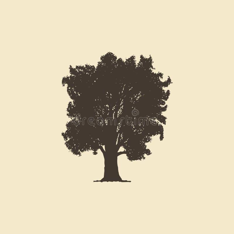 Oak, siluetta disegnata a mano sketch vettoriale di un albero deciduo royalty illustrazione gratis