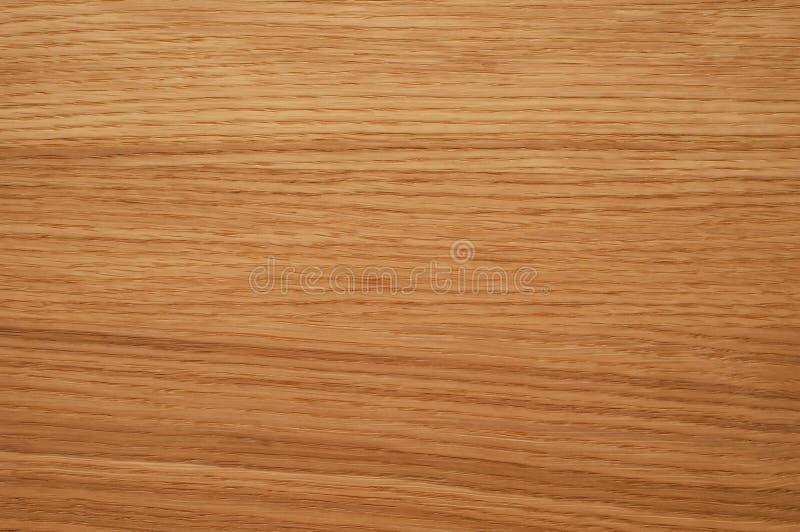 Oak texture royalty free stock photo