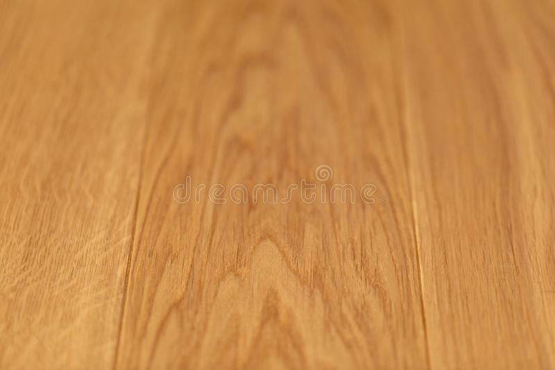 Oak texture. Oak surface with shallow depth of field. Abstract wooden background stock photography