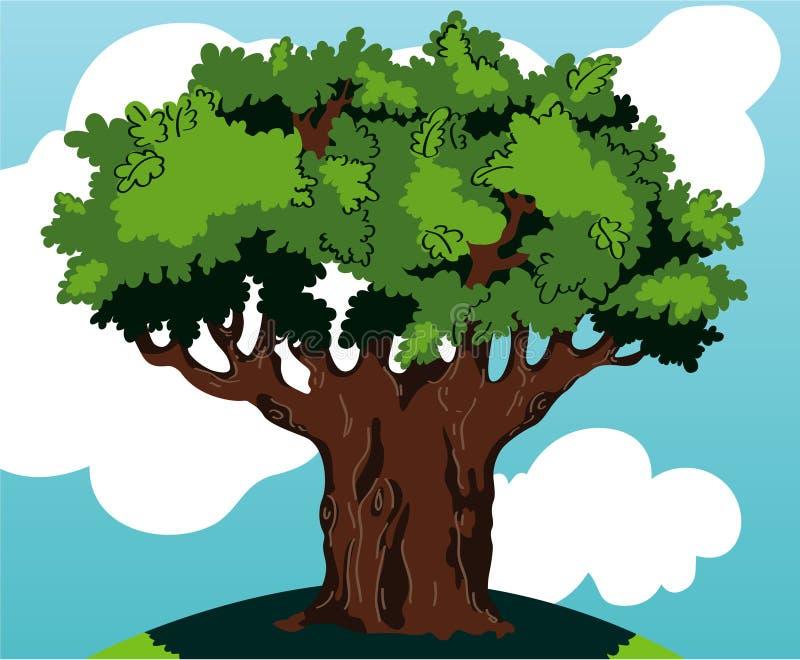 Download Oak tree stock illustration. Image of view, flora, leaf - 20102870