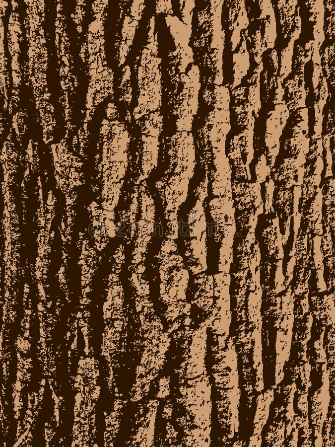 Oak tree bark. Texture of oak tree bark vector illustration