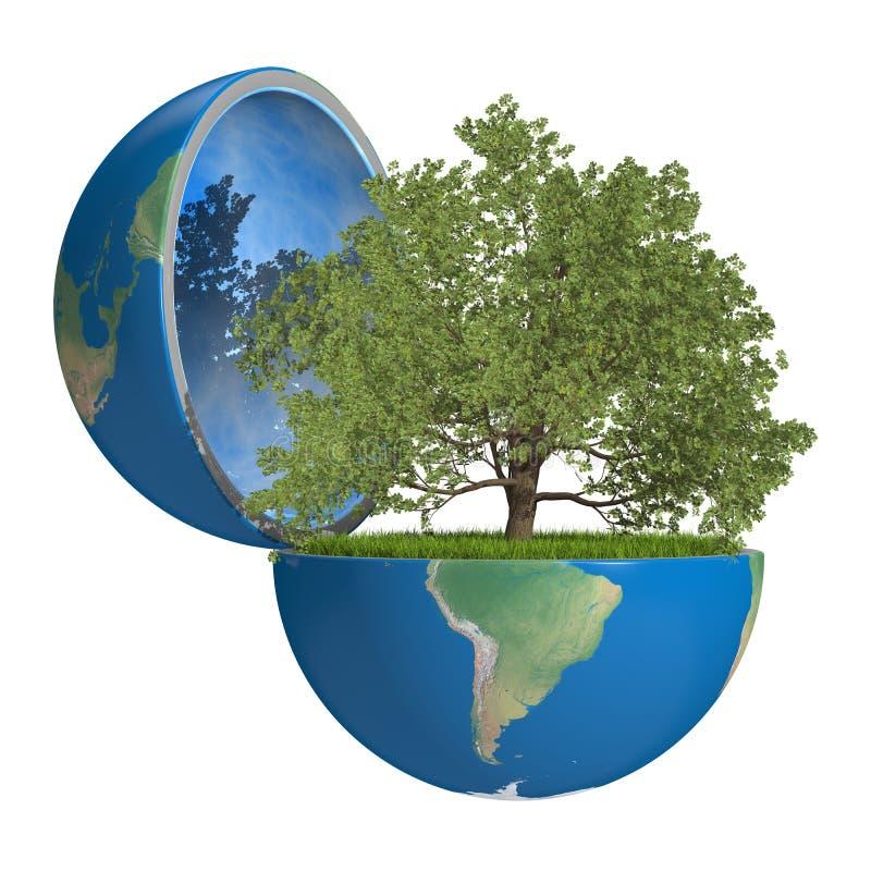 Oak tree inside planet vector illustration