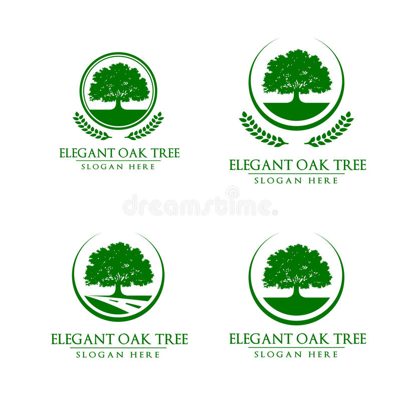 the tree of ecological identity Importance and value of trees  ecological & environmental  the pleasantville country club has had the benefit of savatree's tree care services for more than.