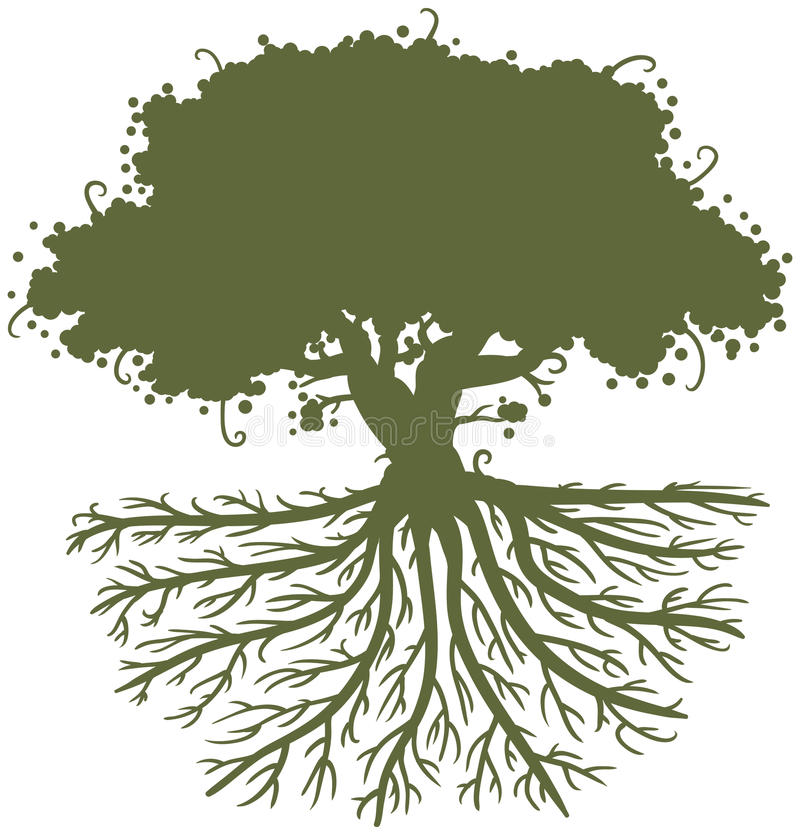 Oak Tree Roots vector illustration