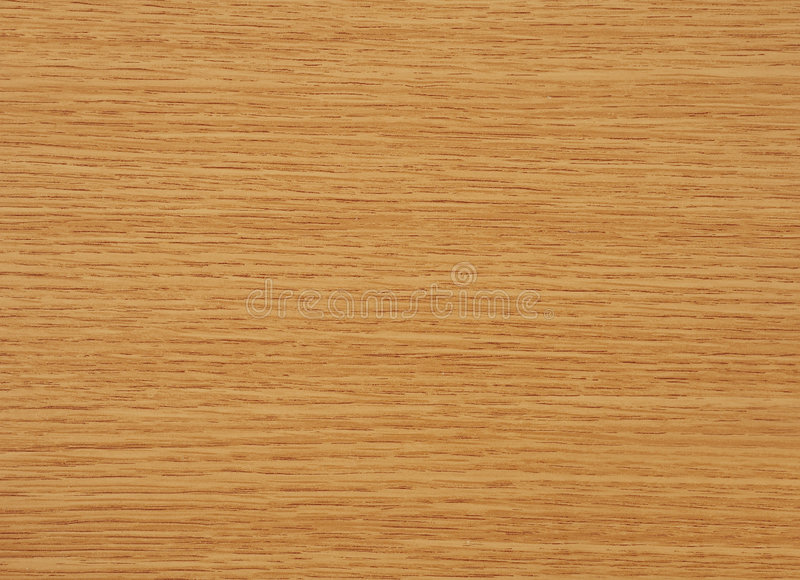 Oak tree wood stock image of wallpaper abstract