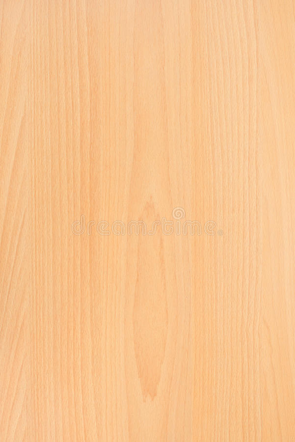 Oak Wood background texture wallpaper. Vertical stripes royalty free stock photo