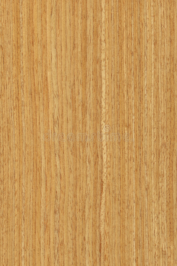 Oak Wood Texture Stock Image Image 8109341