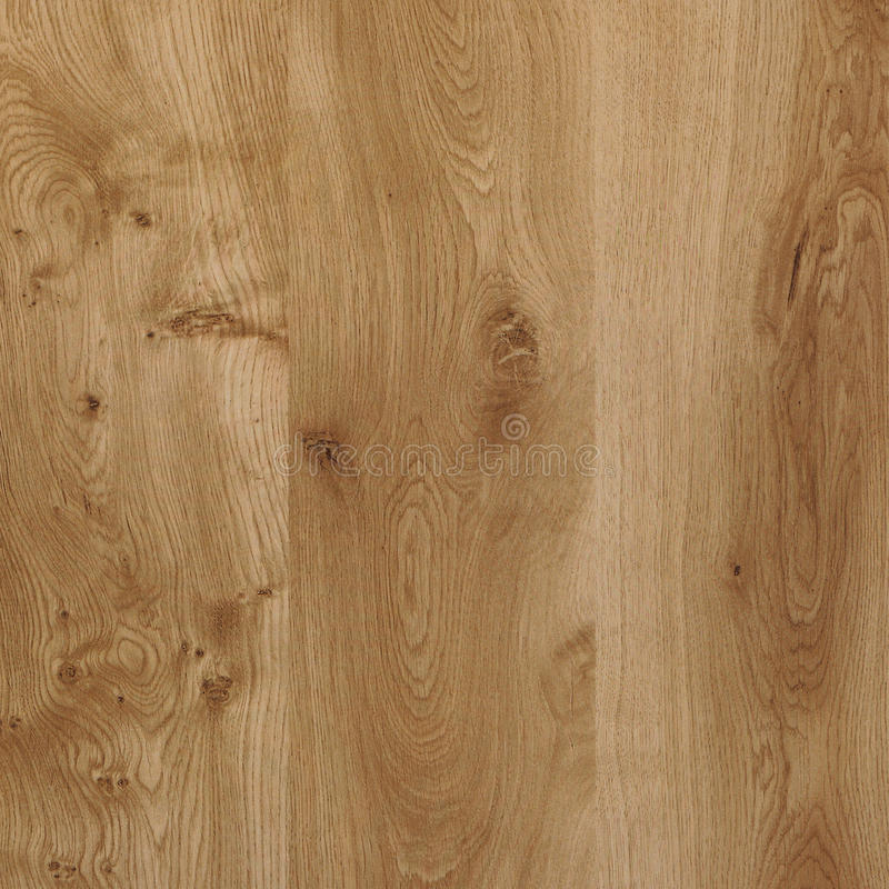 Oak-wood texture. High resolution royalty free stock image