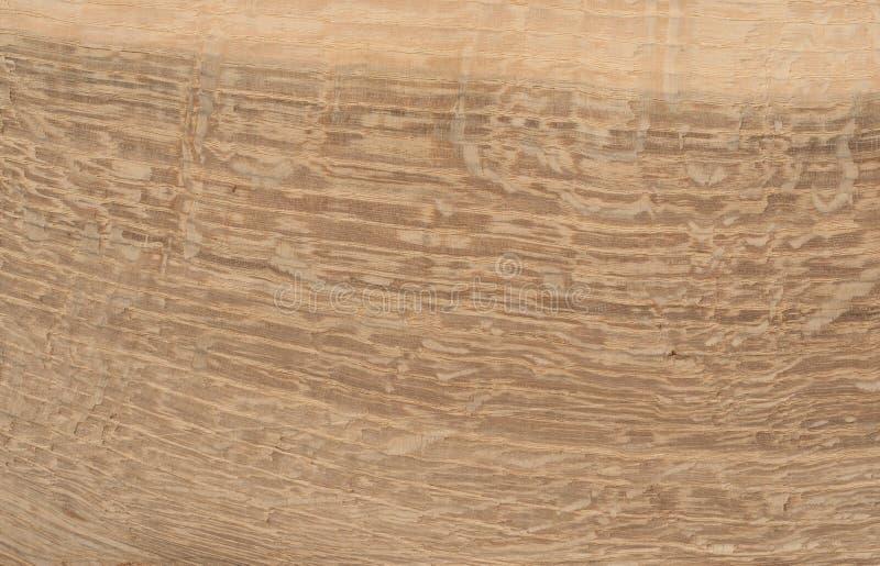 Oak wood texture stock image