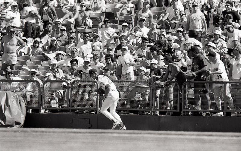 Oakland Athletics pierwszy bazowy Mark McGwire zdjęcie royalty free