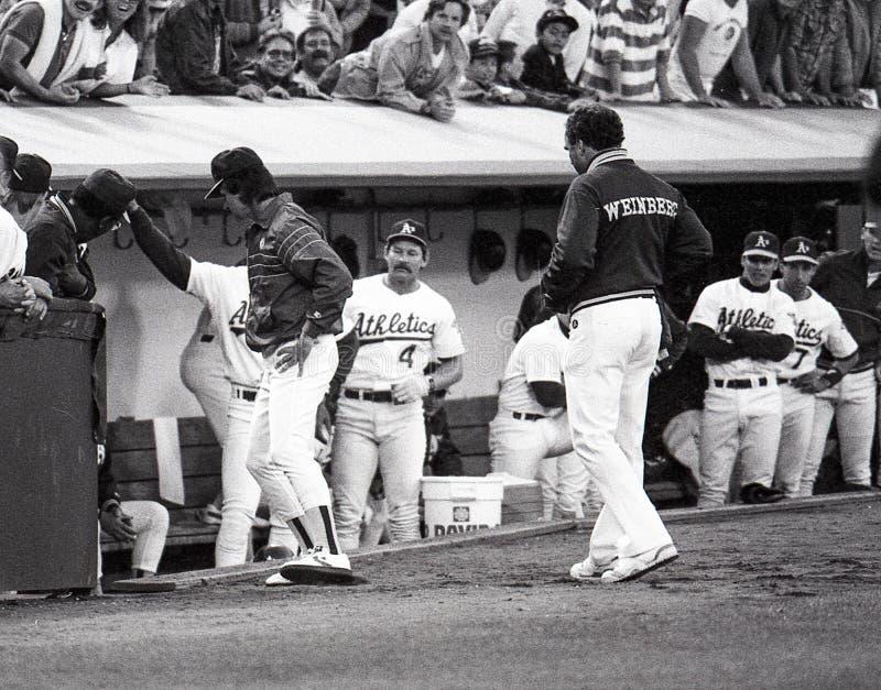Oakland Athleticsdugout circa 1990 royalty-vrije stock afbeeldingen