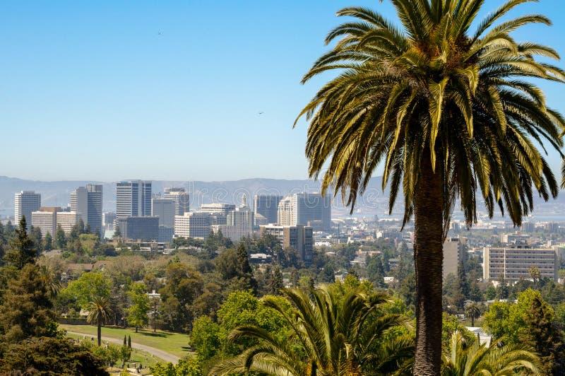 Oakland, CA-cityscape met palm in voorgrond wordt bekeken die stock fotografie