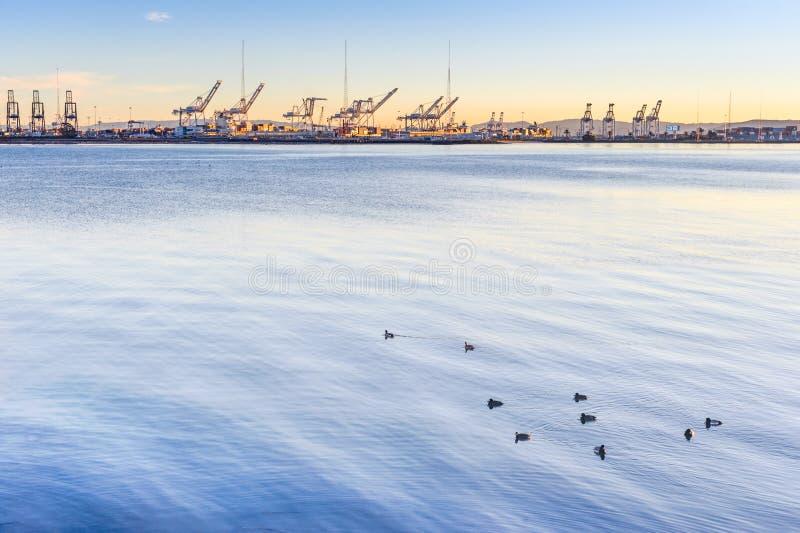 Oakland port royalty free stock photography