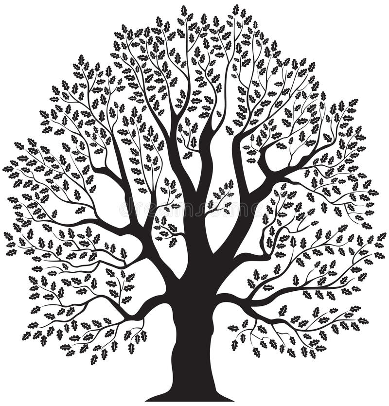 Oaktree stock illustrationer