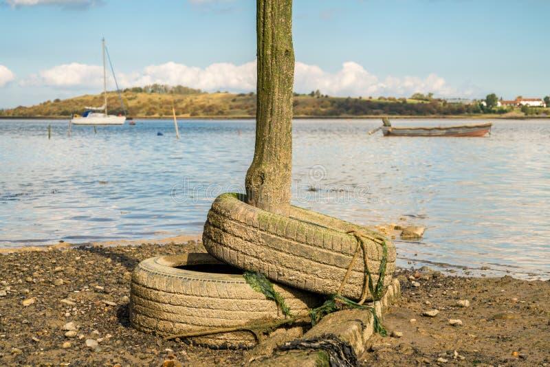 Oare-S?mpfe, nahe Faversham, Kent, England, Gro?britannien lizenzfreies stockfoto