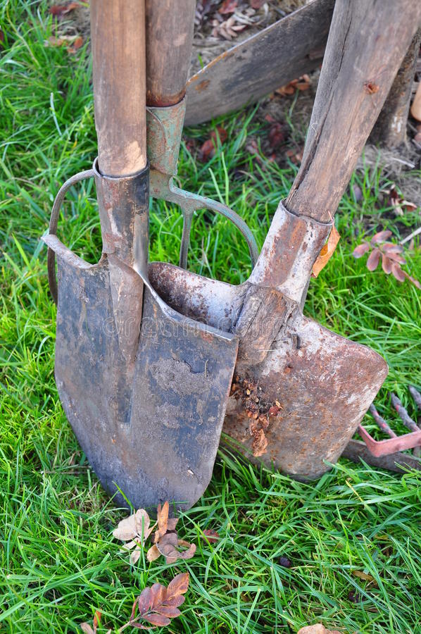 Download Oars stock photo. Image of brown, farm, plant, dirt, recreation - 22035300