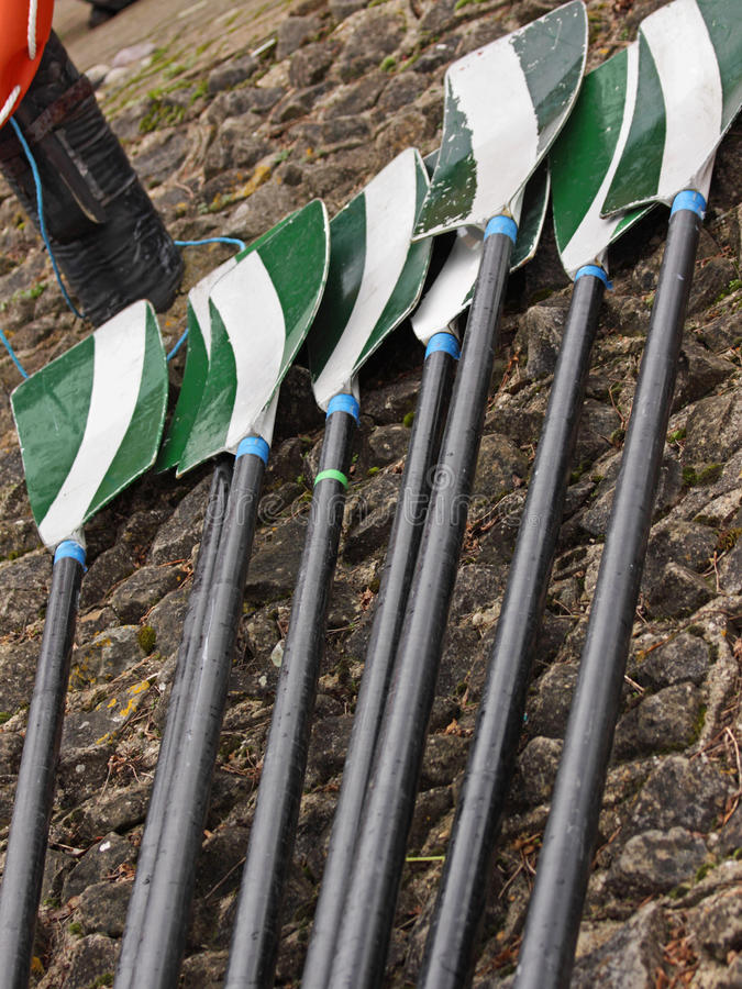 Oars laid out on a quayside. The oars of an eight crew laid out after landing ashore stock photography