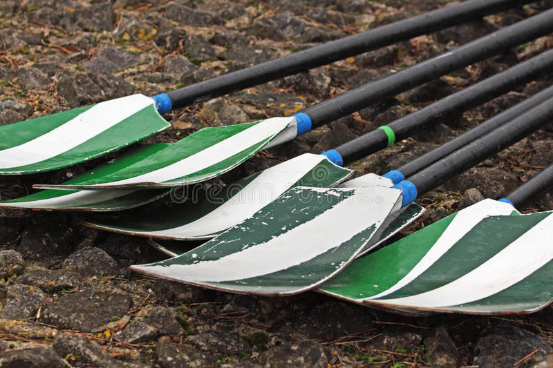 Oars on a quayside. Rowing team oars laid on a quayside after a race stock photography