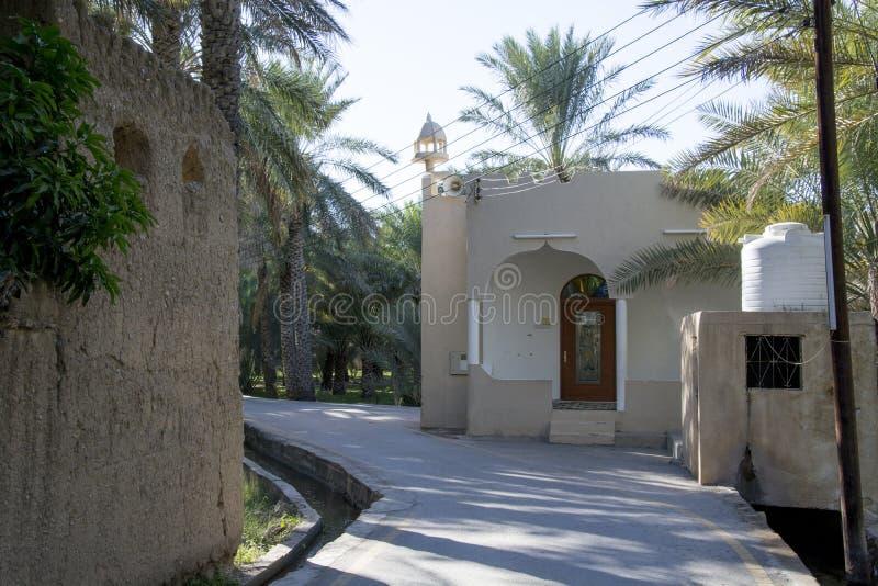 Oase Al Hamra Oman stock afbeelding