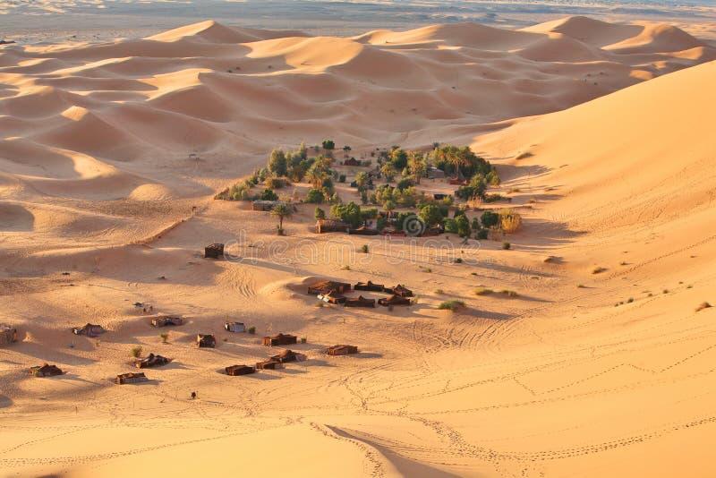 Oase in de Sahara royalty-vrije stock fotografie