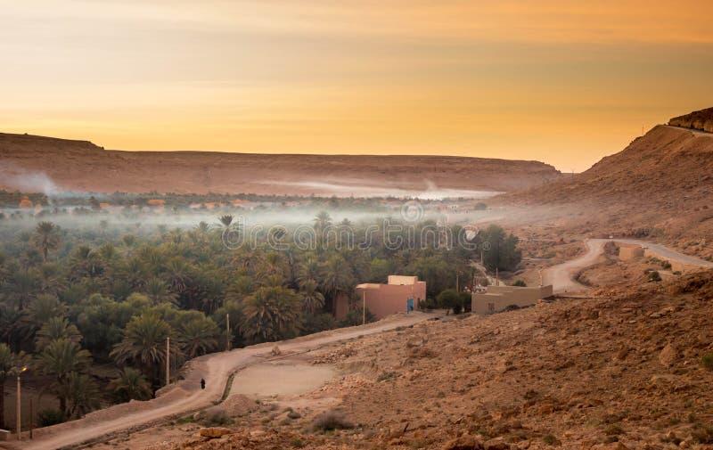 Oase in de woestijn van de Sahara bij zonsondergang stock foto's