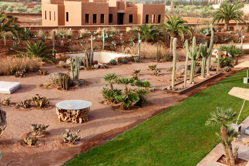 Oase in Marokko royalty-vrije stock foto's