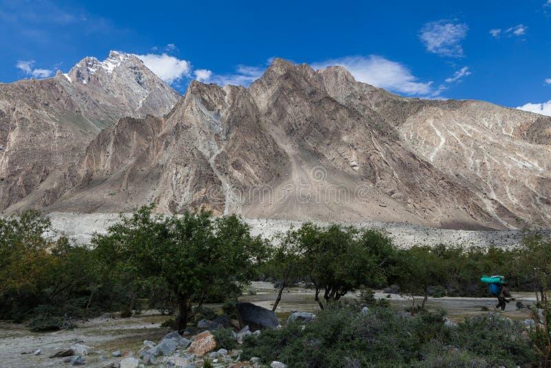 Oase van groene bomen op de manier aan K2 basiskamp met Baltoro-gletsjer royalty-vrije stock afbeelding