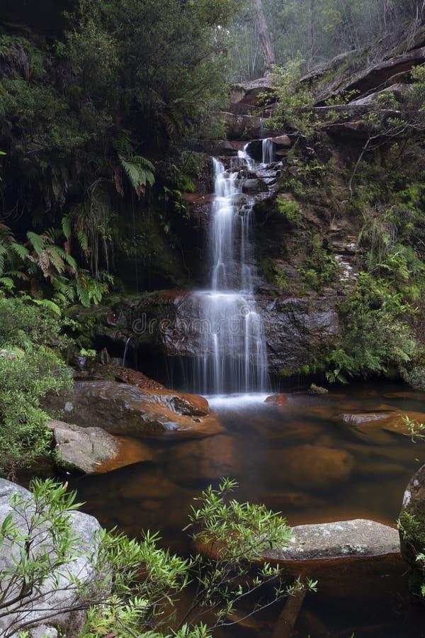 Oasi di Bushland con la cascata graziosa che ruzzola nello stagno della roccia immagini stock libere da diritti
