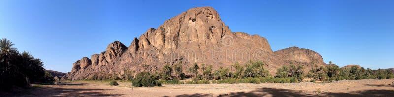 Oasi di Fint (oasi de/du Fint) vicino a Ouarzazate, Morroco immagini stock
