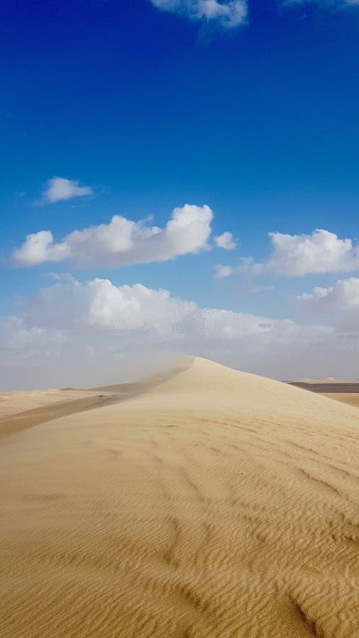 Oasi di Siwa immagine stock