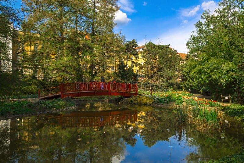 Oasi in giardino botanico a Zagabria fotografia stock libera da diritti