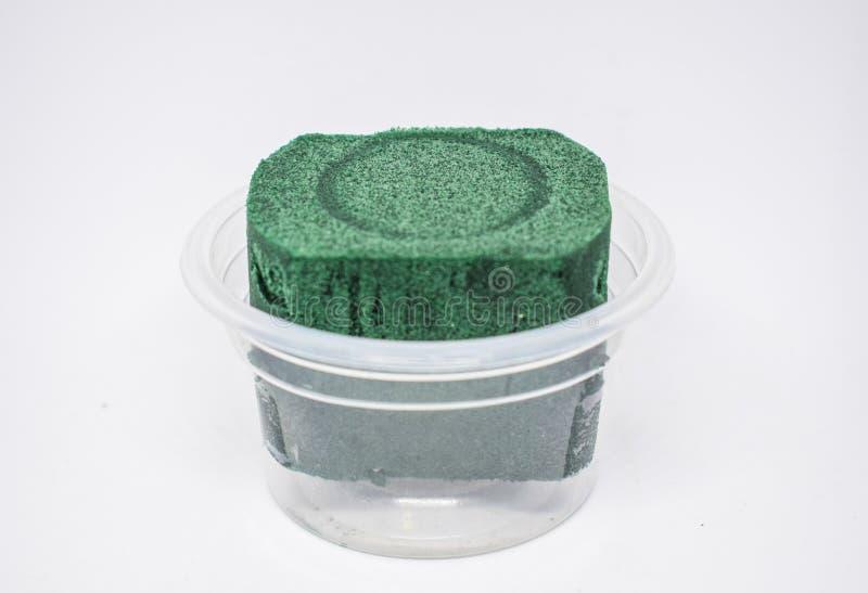 Oasi - la schiuma floreale, oggetti quadrati verde scuro è imballata in un recipiente di plastica bianco trasparente del giro per immagine stock libera da diritti