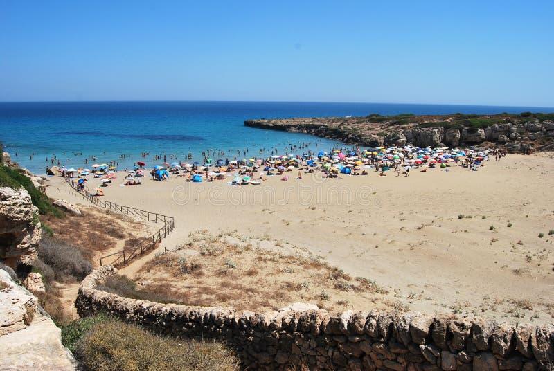 oasi Sicily vendicari obraz stock