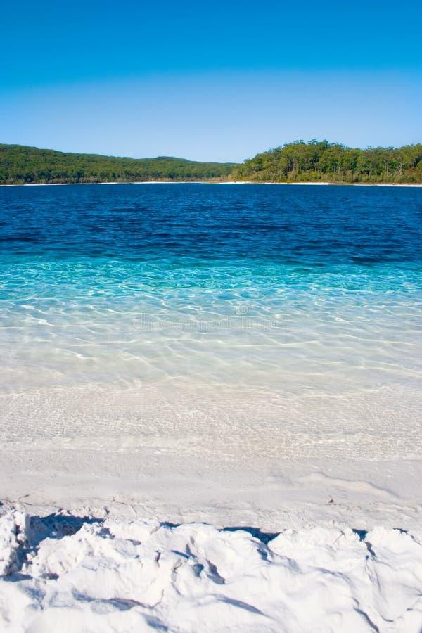 Download Oasi tropicale immagine stock. Immagine di vista, vacanza - 222131