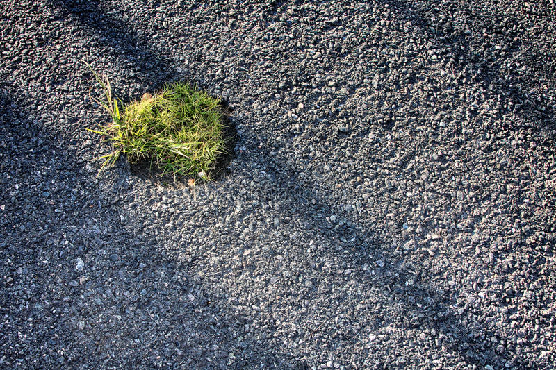 Oasis in asphalt. Small patch of grass in parking lot metaphor of or attitudes about the environment royalty free stock photography