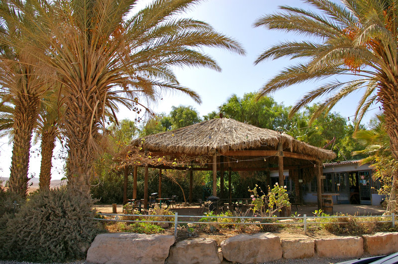 Oasis - coffee shop in the desert. Oasis - coffee shop with palm trees in the middle of the desert royalty free stock photos
