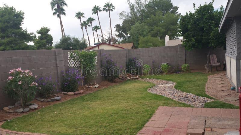 Oasis (cortile privato) immagine stock