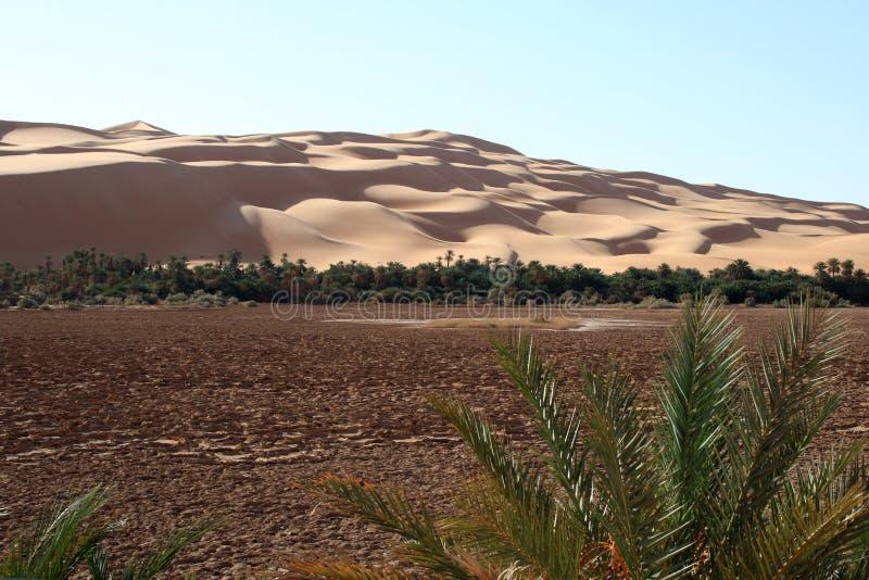 Oasis d'Awbari photos stock