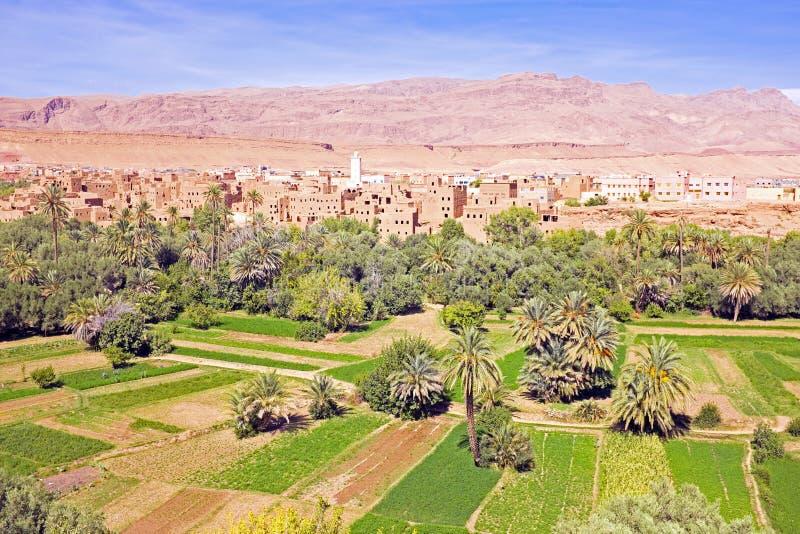 Oasis dans la vallée de dade au Maroc Afrique photo stock