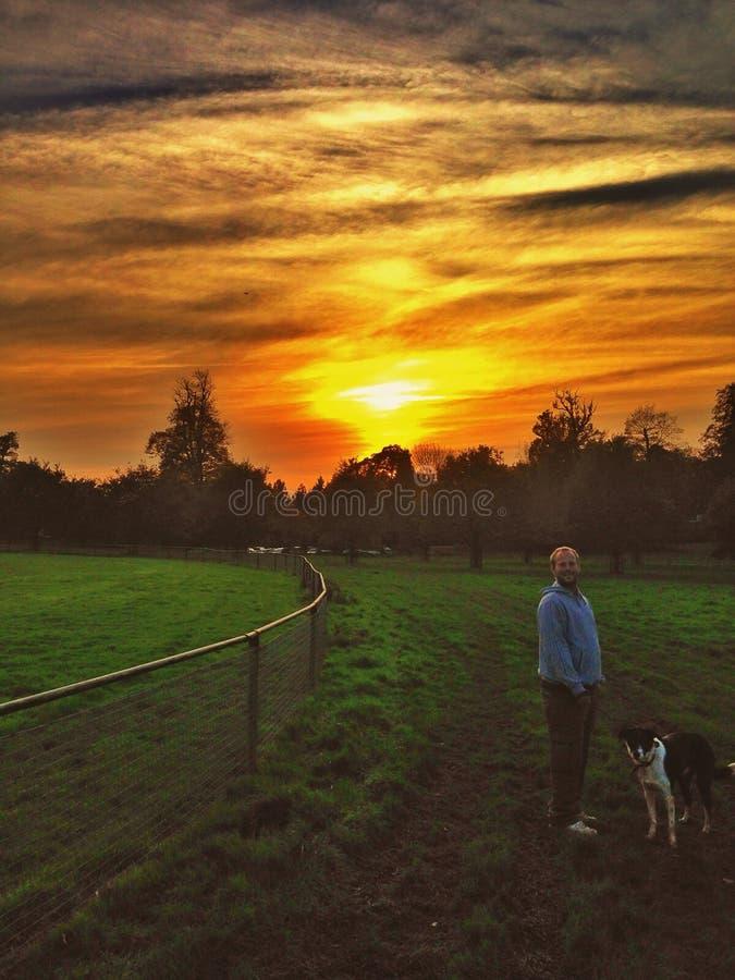 Oasis de Penshurst photo libre de droits