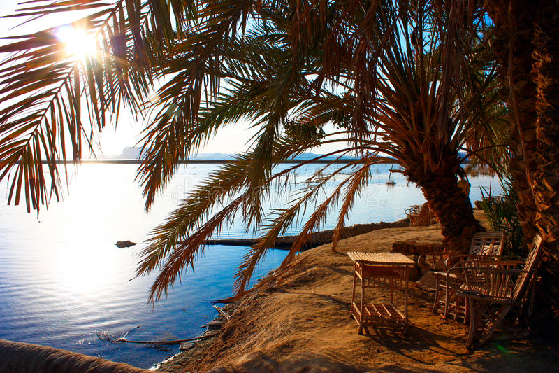 Oasis de Siwa images stock