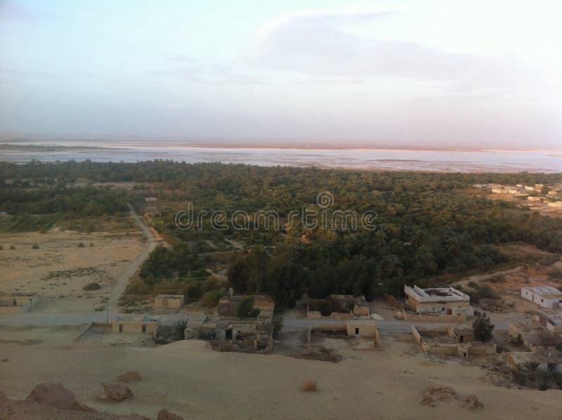 Oasis de Siwa, Egipto foto de archivo
