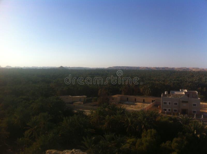 Oasis de Siwa, Egipto imágenes de archivo libres de regalías