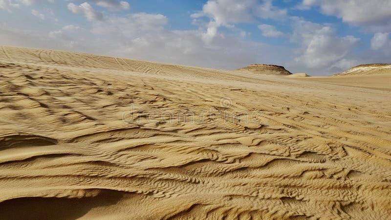 Oasis de Siwa - la beauté du désert photo libre de droits